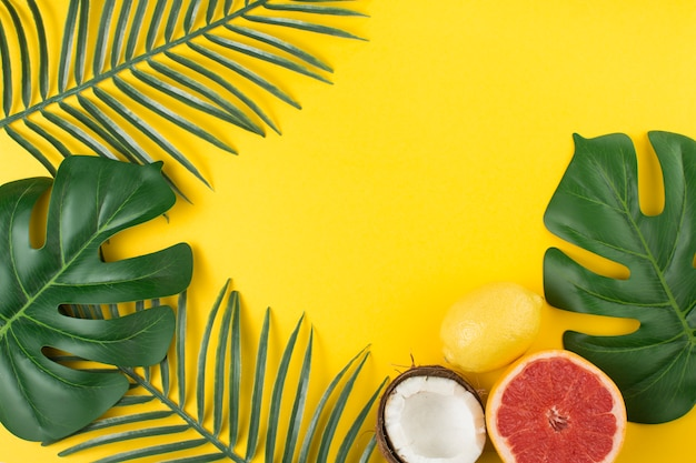 Verdant planta tropical deixa perto de frutas e cocos