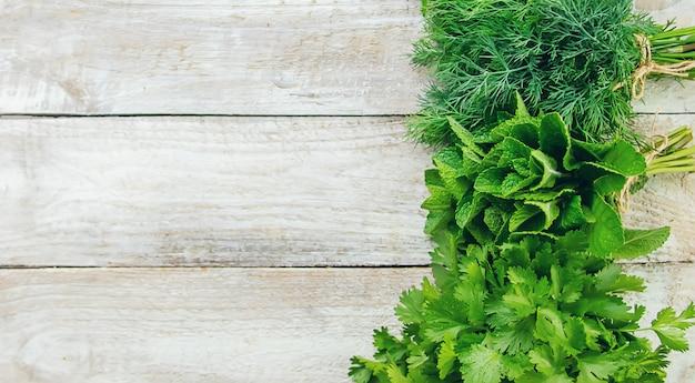 Verdes caseiros frescos do jardim. foco seletivo.