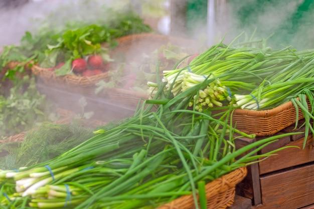 Verduras vendidas em supermercados, mantendo vegetais frescos com umidificador