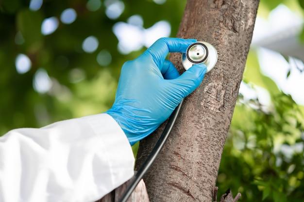 Verificando a saúde ouvindo a natureza da árvore com o estetoscópio salvar a terra