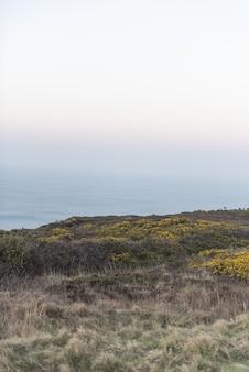 Vertical de belas paisagens naturistas na costa do oceano durante o entardecer