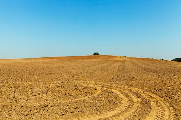 Vestígios do campo agrícola lavrado com rodas restantes após o equipamento especial, o céu azul ao fundo