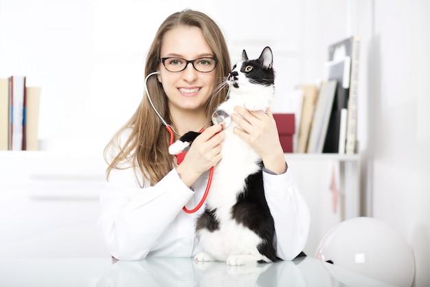 Veterinária com gato