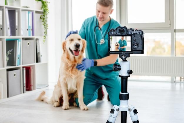 Veterinário acariciando cão golden retriever após consulta clínica