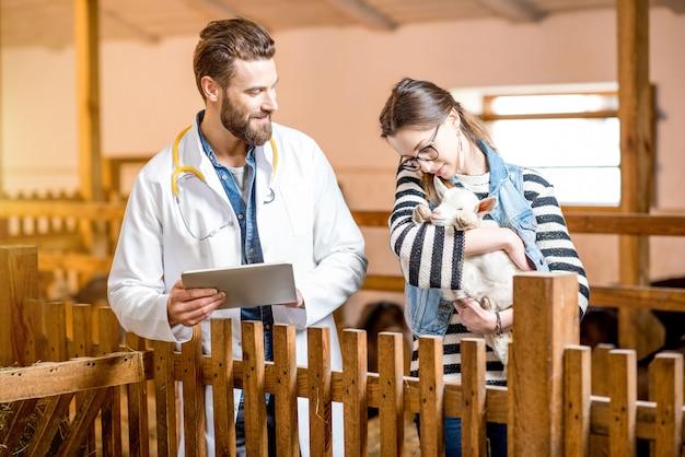 Veterinário bonito em bata médica e uma jovem cuidando do bebê cabrito em pé dentro de casa no celeiro