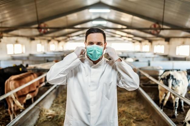 Veterinário caucasiano em uniforme de proteção em pé no celeiro e colocando máscara protetora no rosto.