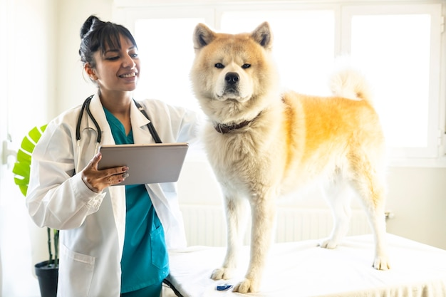 Veterinário latino-americano com cachorro em consultatino.