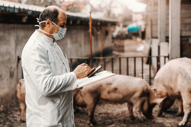Veterinário maduro no jaleco branco e máscara protetora no rosto, mantendo a área de transferência e usando o telefone inteligente em pé na costa.