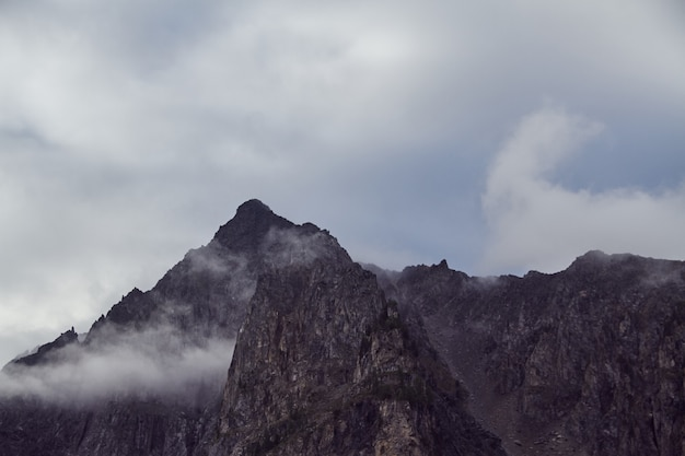 Viagem a pé pelos vales das montanhas, a beleza da vida selvagem, altai