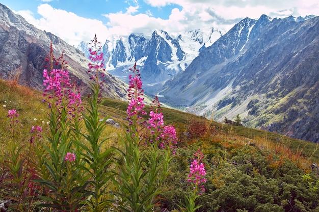 Viagem a pé pelos vales das montanhas. beleza