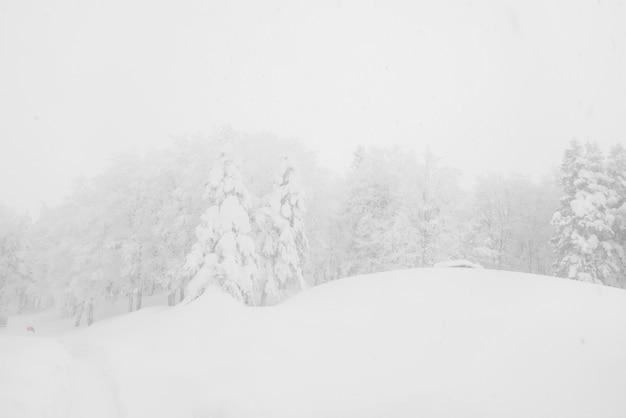 Viagem ao ar livre neve fria