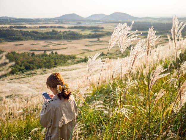 Viagem de atividade de viagem na bela silver grass ou miscanthus sinensis de uma ilha de jeju no outono da coréia.