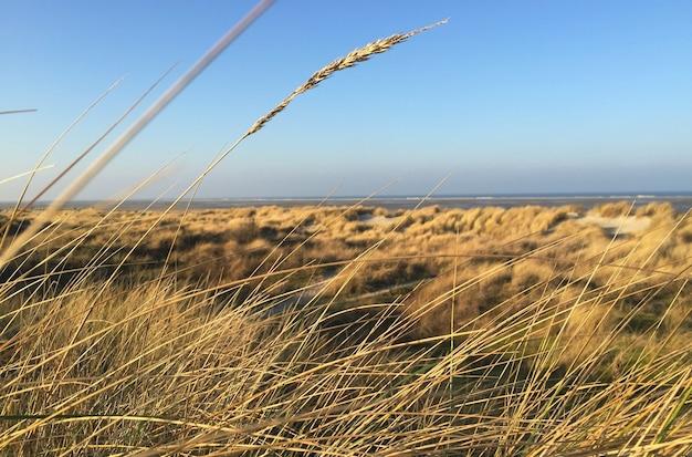 Viagem de férias filmada em west frisian island borkum