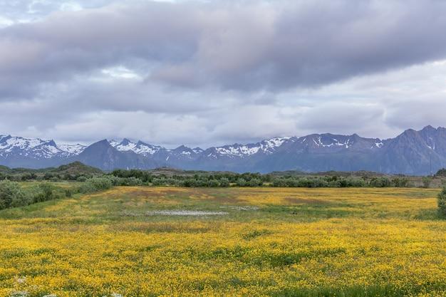 Viagem de verão na bela noruega. fim de semana de viagens