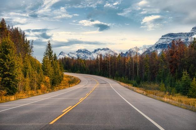 Viagem panorâmica com a montanha rochosa na floresta de outono no icefields parkway