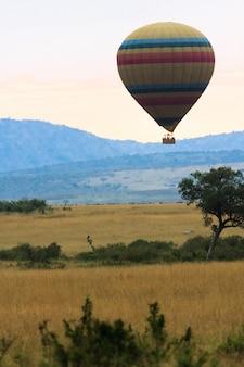 Viajando em um balão de ar quente. quênia, áfrica
