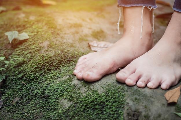 Viajante, asiático, descalço, andar, ligado, verde, natureza, musgo, samambaia árvore, em, floresta tropical, área, em, queda água, em, natural, parque
