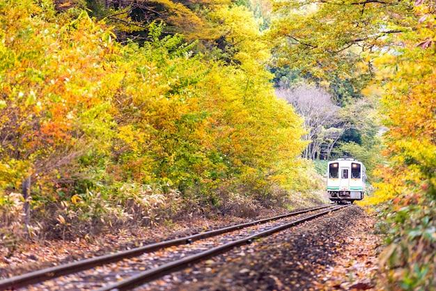 Viajante de trem branco fukushima japão