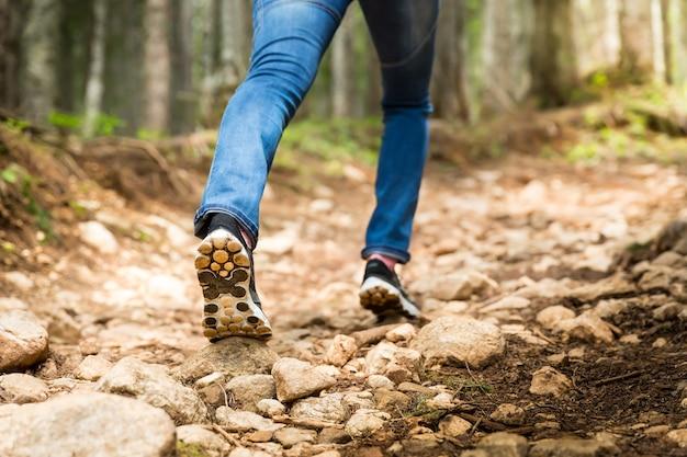 Viajante na frente da trilha na floresta
