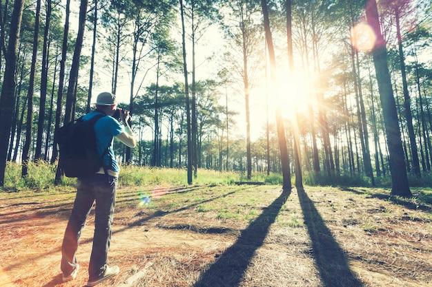 Viajante que toma uma foto na floresta com luz solar na manhã.