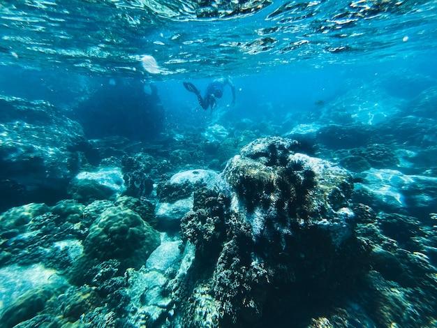 Viajar no mar de mergulho mar azul claro