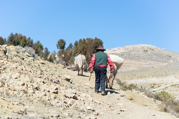 Vida rural na ilha do sol, lago titicaca, bolívia