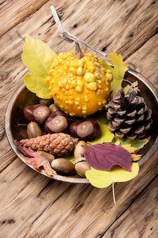 Vida simbólica do outono ainda