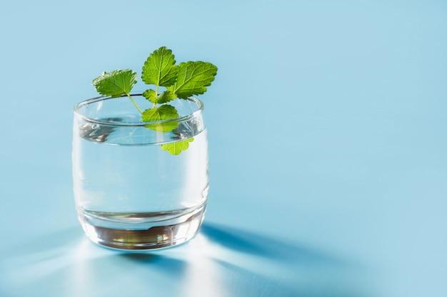 Vidro da água com a hortelã no azul pastel. um tiro. fechar-se. copie o espaço. balanço de água para saudável.
