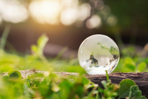 Vidro do globo na grama com luz do sol. conceito de ambiente