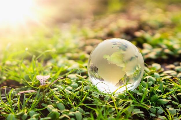 Vidro do globo na grama verde com luz do sol. conceito de ambiente