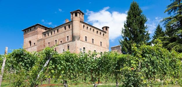 Vinha na região de piemonte, itália, com o castelo grinzane cavour ao fundo. o langhe é o distrito vinícola do vinho barolo.