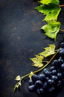 Vinho e uva