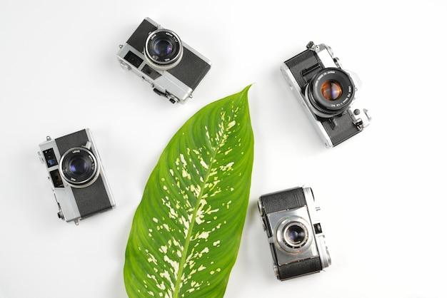Vintage do equipamento fotográfico, conceito do espaço de trabalho com a folha verde no fundo branco.