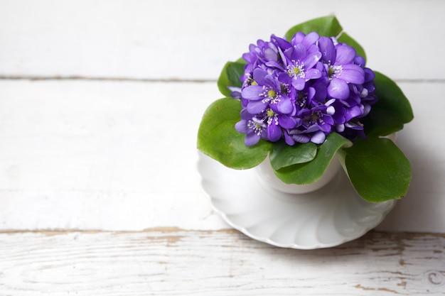 Violetas flores sobre fundo de madeira