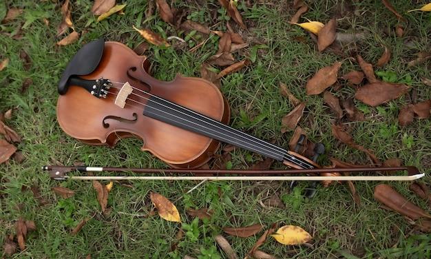 Violino e arco colocados na grama verde