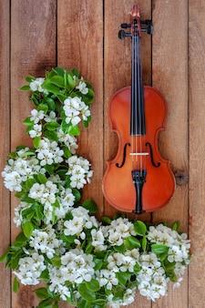 Violino velho e ramos de árvore de florescência da maçã.