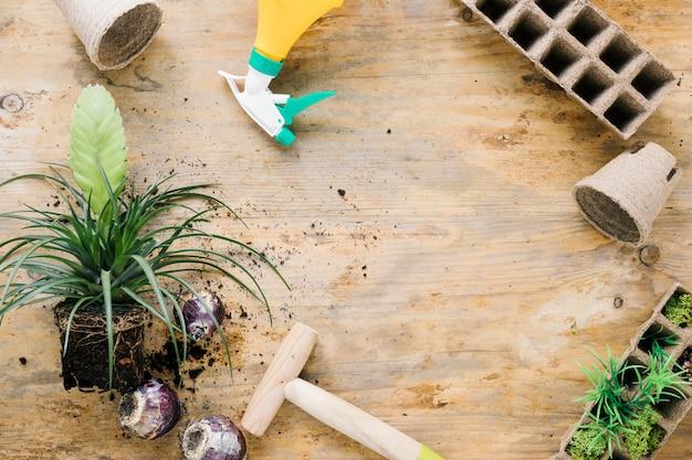 Visão aérea da bandeja de turfa; pote de turfa; dibber; cebola; planta com solo na superfície de madeira marrom
