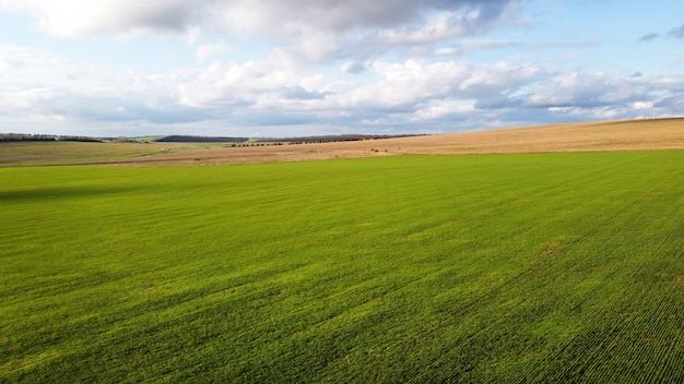 Visão aérea de drones da natureza na moldávia, campos semeados, árvores ao longe, céu nublado