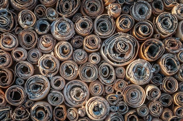 Visão aérea de espirais de uma casca de bétula. textura natural.