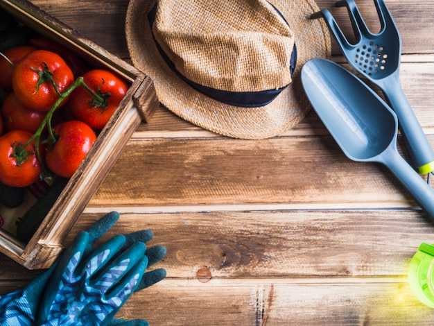 Visão aérea, de, tomates, em, caixa madeira, com, chapéu, e, jardinagem, equipamentos