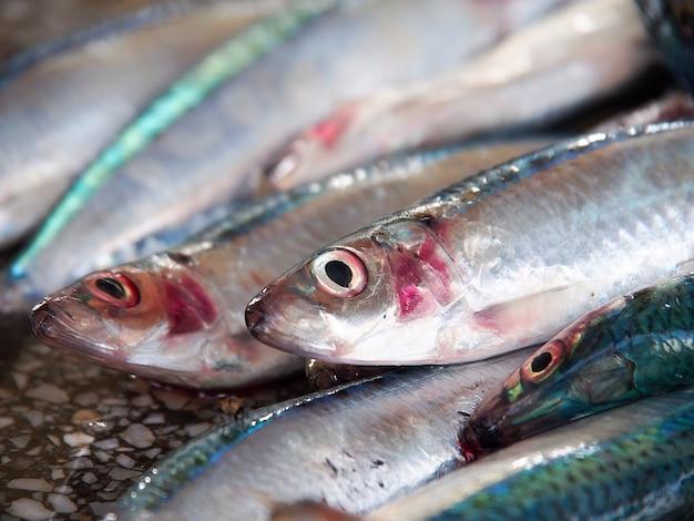 Visão aproximada de peixes no mercado