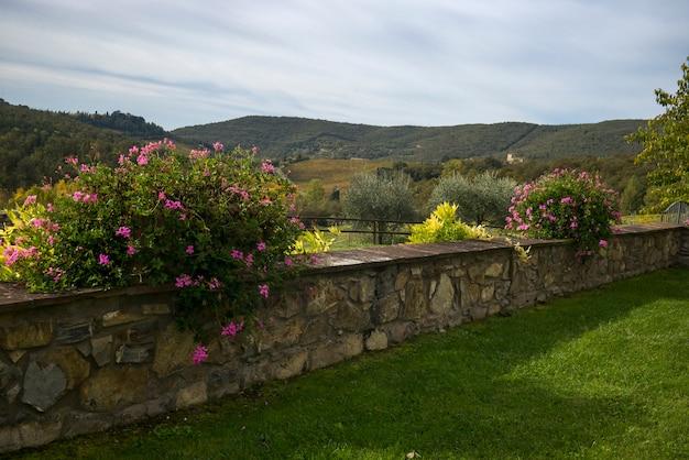 Visão cênica, de, parede pedra retenção, em, recurso tourist, gaiole, em, chianti, tuscany, itália