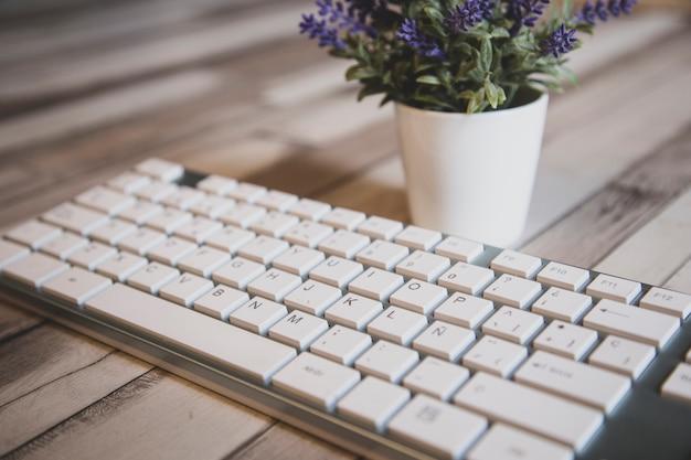 Visão estreita, de, um, modernos, branca, teclado pc, com, flores
