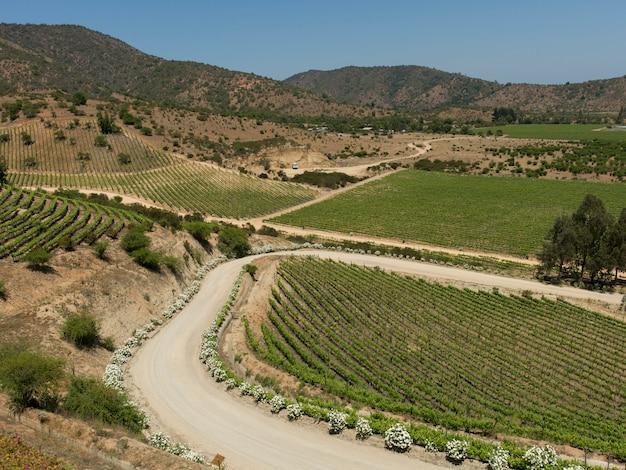 Visão geral das vinhas no vale de casablanca, chile