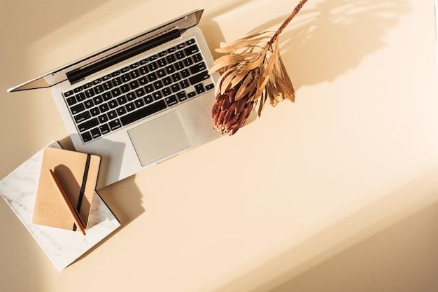 Visão plana leiga do laptop, flor protea e notebook