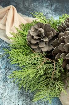 Visão superior dos ramos de pinheiro de pinha em xale bege em superfície escura