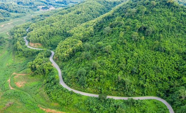Vista aérea acima da floresta de montanha verde na estação das chuvas e estrada curva na colina conectando o campo