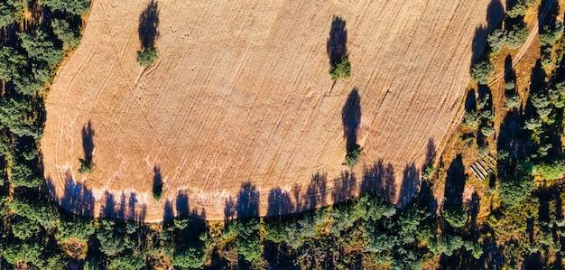 Vista aérea aérea de campos aráveis e árvores circundantes. fundo.