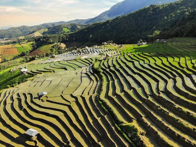 Vista aérea belas paisagens do terraço do arroz pa pong peang em pa bong piang, chiang mai, na tailândia