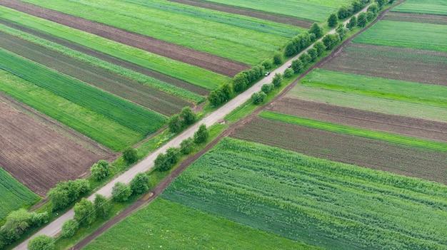 Vista aérea com drone de campos coloridos e estradas
